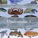 Plastic Canvas Book Underwater_01