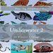 Plastic Canvas Book Underwater_02