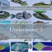 Plastic Canvas Book Underwater_03