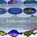 Plastic Canvas Book Underwater_05