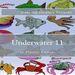 Plastic Canvas Book Underwater_11