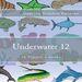 Plastic Canvas Book Underwater_12