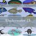 Plastic Canvas Book Underwater_18