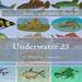 Plastic Canvas Book Underwater_23