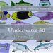 Plastic Canvas Book Underwater_30